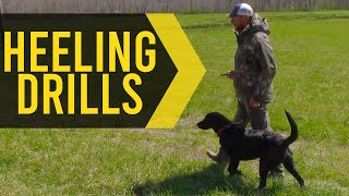 Simple Heeling Drills For Great Hunting Dogs