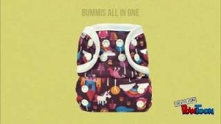 Bumbini Cloth Diaper Company - All In One Diapers