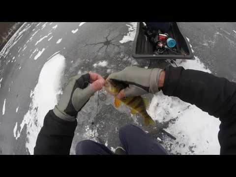 Ice Fishing the Flash Freeze, Philadelphia
