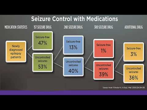 Medical Therapy in Epilepsy: Treatment, Side Effects, and Drug Interactions
