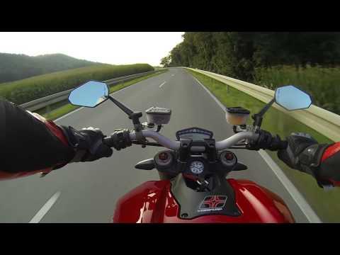 Vogel vs. Motorrad