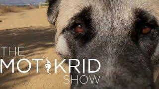 The Mot & Krid Show - Episode 07