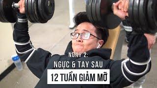 ĐỪNG DỪNG LẠI | Ngày 2 | Chest & Triceps | 12 Tuần Giảm Mỡ | An Nguyen Fitness