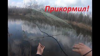 Прикормил и забросил кастинговую сеть Разведка с кастинговой сетью по карасю Рыбка просыпается