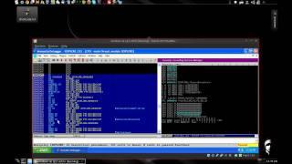 How to run shellcode in immunity debugger