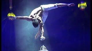 """Программа """"Шоу воды, огня и света!"""" в челябинском цирке"""