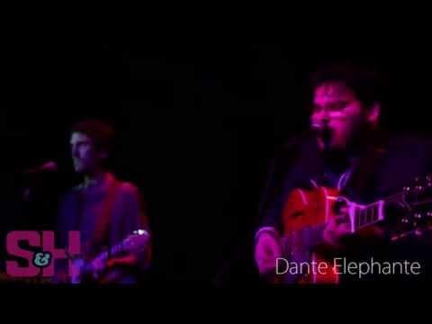 Dante Elephante - Couple Apples (LIVE at Velvet Jones)