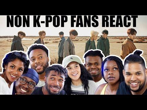 NON KPOP FANS Love or Hate | GOT7 | Never Ever M/V | REACTION!!!
