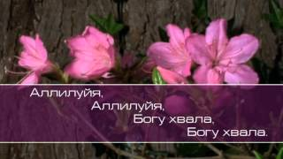 Христианское поклонение. Сборник №55