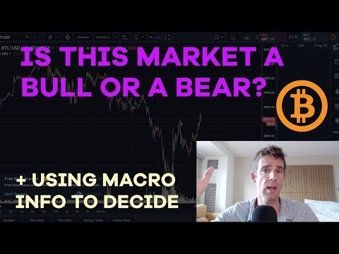 Bull or Bear - When Will We Know? Altcoin Movements, Price Predictions, Bubble Fallacies - CMTV Ep51