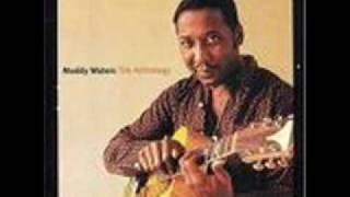 Muddy Waters - Walking Thru the Park