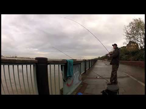 Urban fishing London -Tales from the Thames - Blog 1
