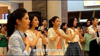 江苏南京:我的未来不是梦「快闪」