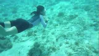 沖縄の水納島に、8月の海の日を含めた連休にインナースペースの愉快な仲...