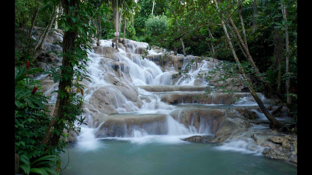 Resultado de imagem para dunn's river falls