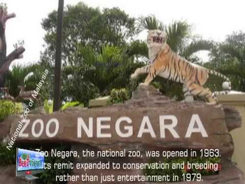 Tourist attraction in Malaysia-National Zoo of Malaysia
