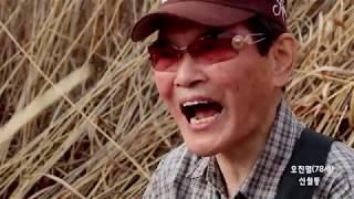 어느 70대 어르신 노래 (동백아가씨-가슴아프게-임그리워-갈매기사랑-안동역) -즉석라이브  / 촬영전준성