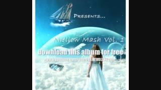BENEVOLENTvibe - Mellow Mash Vol. 1