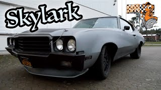 Race Antz - 1970 Buick Skylark