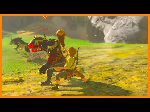 Plateau of Deadly Enemies! The Legend of Zelda: Breath of the Wild Master Mode