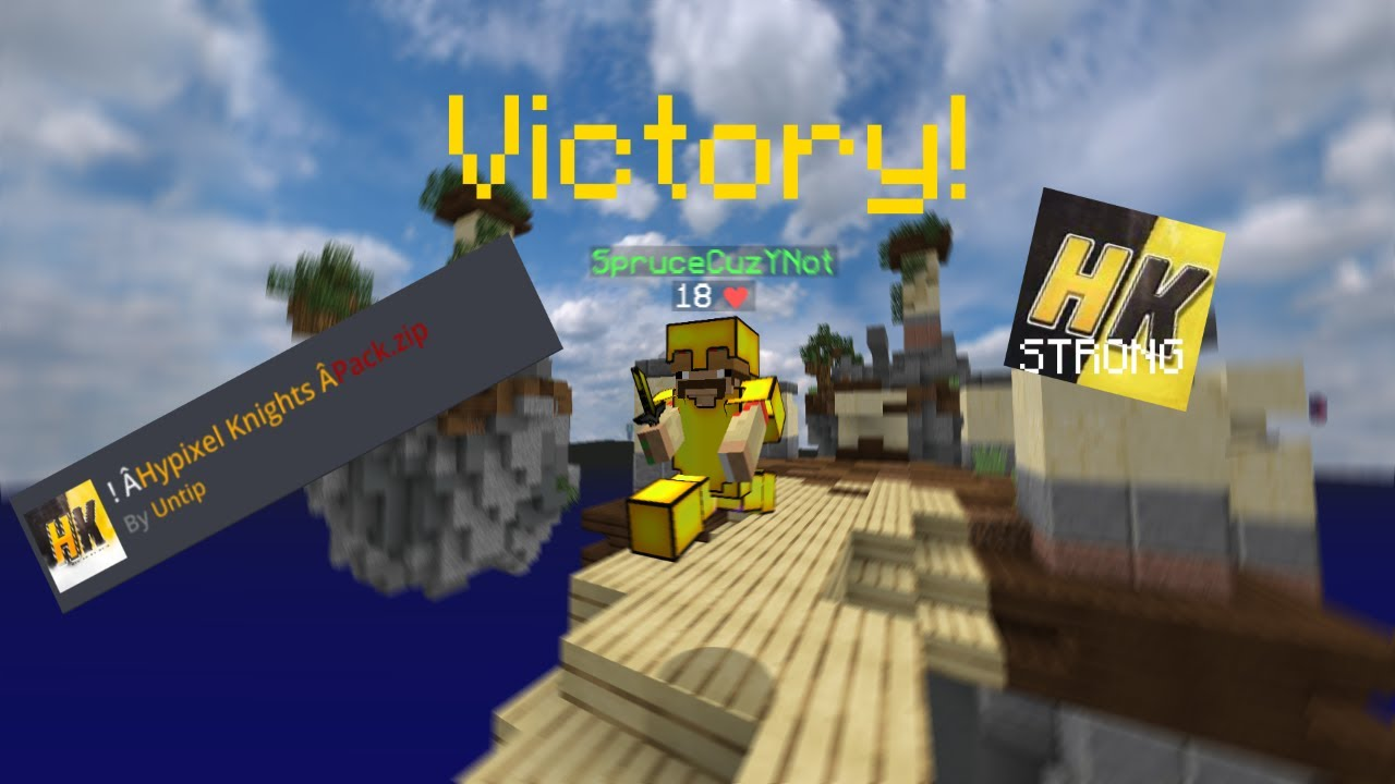 Using the HK Texture Pack to win Skywars