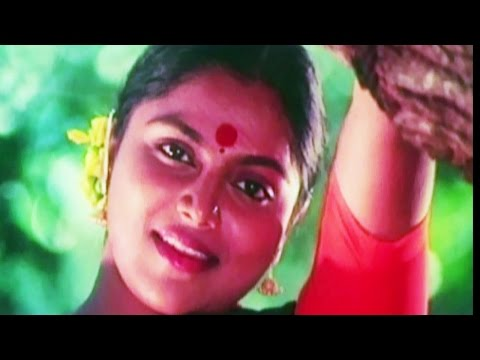 Aavaram Poovu -S P Balasubrahmanyam, P Susheela | Saritha | Achamillai Achamillai Tamil Song