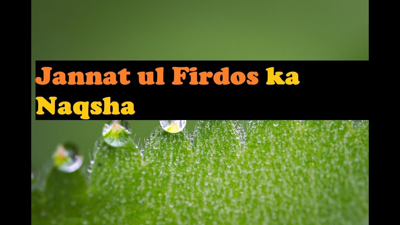 Jannat Ul Firdos Ka Naqsha || Maulana Tariq Jameel 2020 | urdu | hindi
