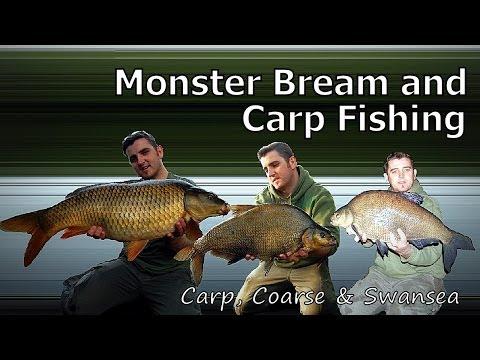 *** Carp And Bream Fishing *** Monster Bream. The Fendrod Lake. Video 111
