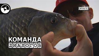 Поплавочная ловля. Карась. Рыбалка на Днепре | Новые Диалоги