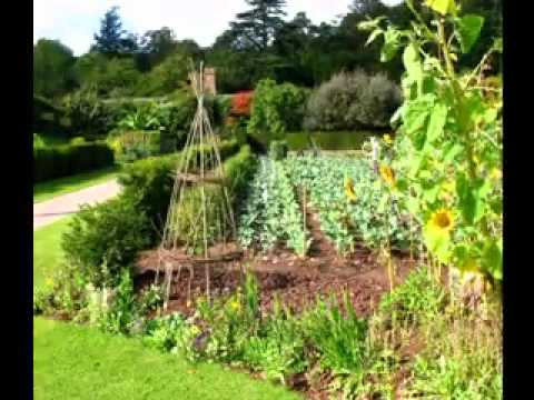 Home vegetable garden ideas youtube for Holiday home garden design