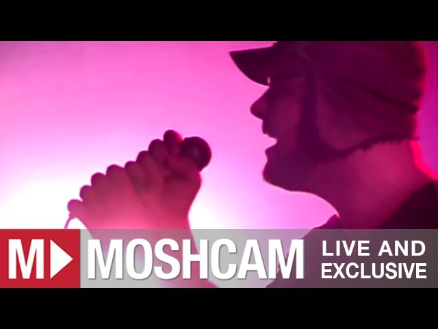 does-it-offend-you-yeah-dawn-of-the-dead-we-are-rockstars-live-in-sydney-moshcam-moshcam
