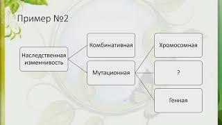 ЕГЭ Биология Задание 1 Часть 1 Биологические термины и понятия