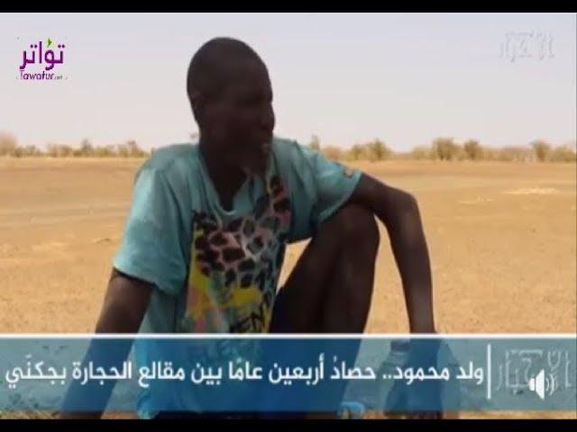 ولد محمود .. حصاد أربعين عاما بين مقالع الحجارة بجكني - الأخبار إينفو