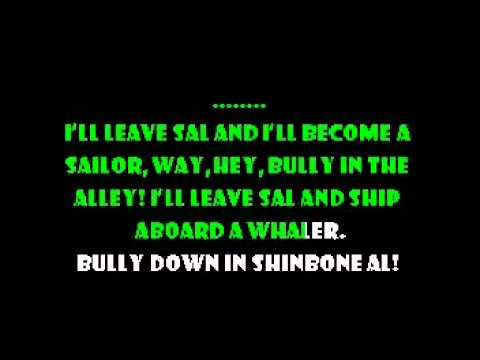 Bully In The Alley - Paddy and the Rats Karaoke