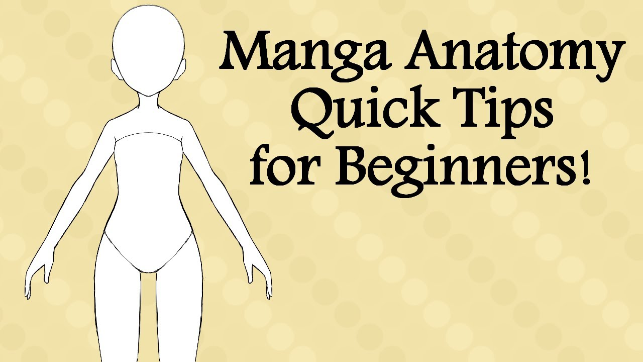 Manga Anatomy Quick Tips for Beginners! - YouTube