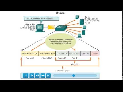 Unicast MAC Address