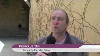 Le Tourisme en Seine-et-Marne en 2010
