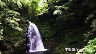 新緑の赤目四十八滝(室生赤目青山国定公園)-Akame 48 Falls Nabari city,Mie Japan