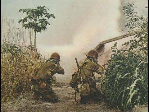 Japanese Army vs. Killer Crocodiles 1945
