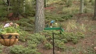 Golf-loving Whirligig - Wind & Weather