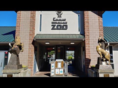 Visit Cougar Mountain Zoo