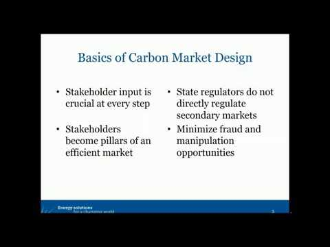 Carbon Markets 101: Keys to Effective Design and Management (Webinar)