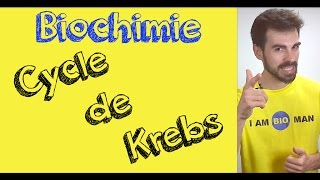 Cours de biochimie: cycle de Krebs