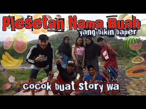 GOKIL....PLESETAN NAMA BUAH || BIKIN BAPER || UNTUK STORY WA