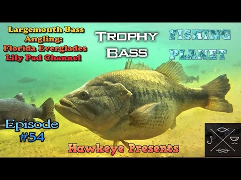 Fishing Planet - Ep. #54: Largemouth Bass Angling: TROPHY BASS -  Florida  Everglades HOTSPOT!