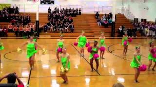 Alan B. Shepard Dance Team Oak Forest Competition 1/23/2011