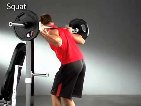 Marcy Pro Olympic Bench YouTube