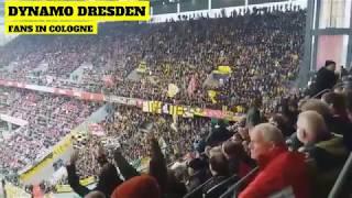 Dynamo Dresden Ultras