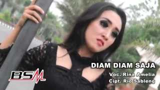 Rina Amelia - Diam Diam Saja (Official Music Video)