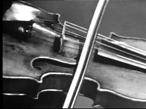 The 5 Best Violin Songs of All Time – TakeLessons Blog